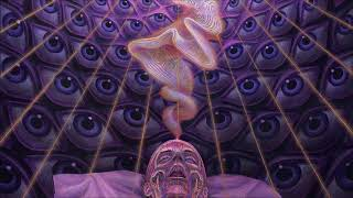 Terence Mckenna - The Unspeakble Is The True Domain Of Being