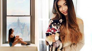 Stylewithme - Nové štěně a žádost o ruku v New Yorku! | VLOG - Zdroj:
