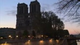 Wood delivered to Notre Dame cathedral after fire