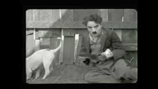 Charles Chaplin A Dogs Life subtitulos español pelicula completa 1918   YouTube 1