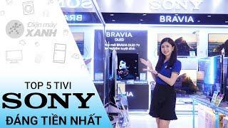 Top 5 tivi Sony đáng đồng tiền nhất hiện nay - Xem ngay kẻo lỡ | Điện máy XANH