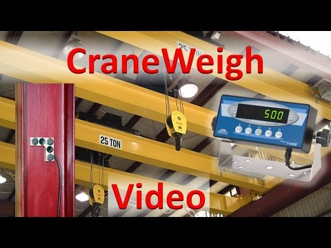 CraneWeigh measures load weight, right on the crane