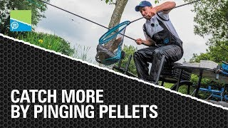 Video thumbnail for CATCH MORE by Pinging Pellets Preston Innovations Match Fishing Videos