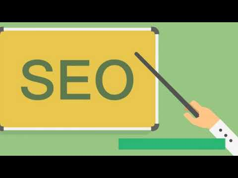 Professional SEO Training In Chandigarh