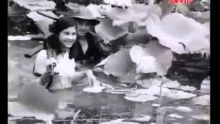 Phim Việt Nam Mùa gió chướng