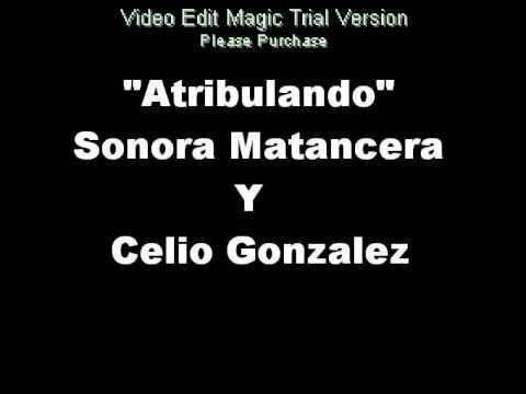 05 Atribulando - Sonora Matancera Y Celio Gonzalez