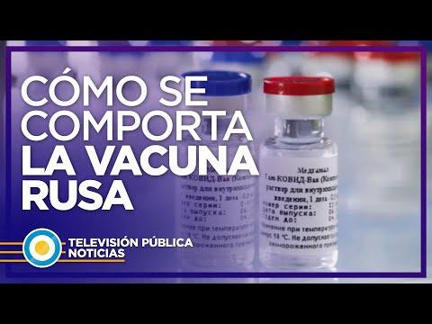 Cómo es el comportamiento de la vacuna rusa contra el COVID19