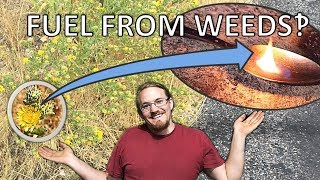 Extracting Jet Fuel From GumWeed