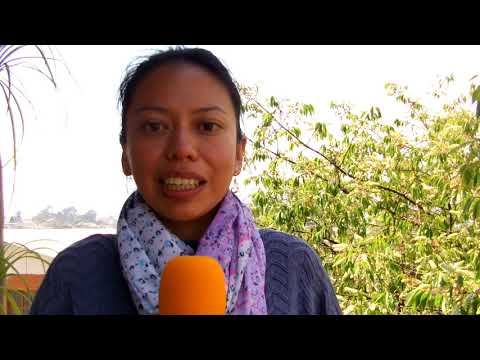 Spanish School Director in Guatemala