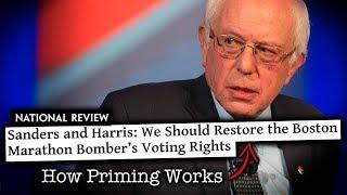 Bernie Sanders' Voting Rights Advocacy Derailed by Propagandist Pundits