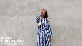Alan Walker ft. Ariana Grande Style , Albert Vishi - Never (Radio Edit)
