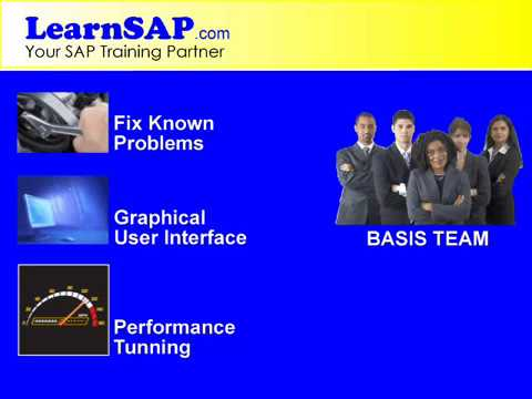 SAP BASIS Training by www.LearnSAP.com