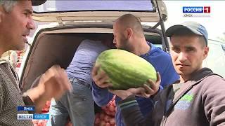 В Омске в продаже появились долгожданные арбузы