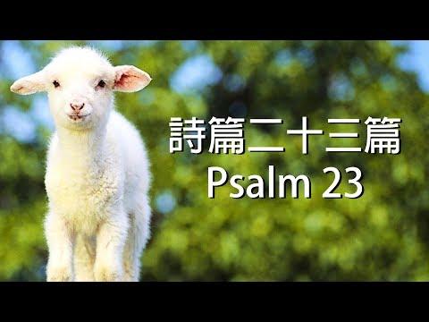 詩篇二十三篇 Psalm 23( 含祷告旁白 國語詩歌 我心旋律授權)