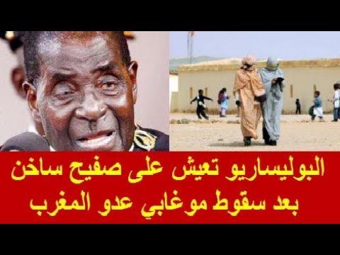 البوليساريو تعيش على صفيح ساخن بعد سقوط موغابي عدو المغرب