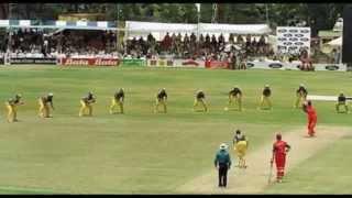6 aggressive fielding in world cricket