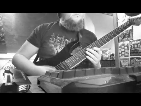 Winterfylleth - Whisper Of The Elements (Guitar Cover)