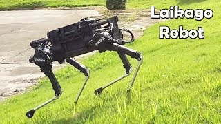 Laikago, Four Legged Dog Robot Created By Unitree Robotics Looks Like Spotmini From Boston Dynamics