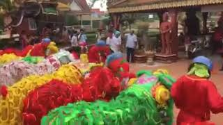 Lion dance in pursat