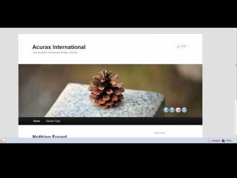 Floating Social Media Icon Plugin for Wordpress in Action