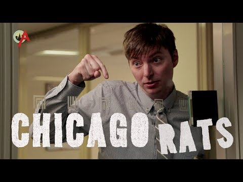 Look Down (Chicago Rats Ep. 1 Of 3) - Smashpipe Comedy