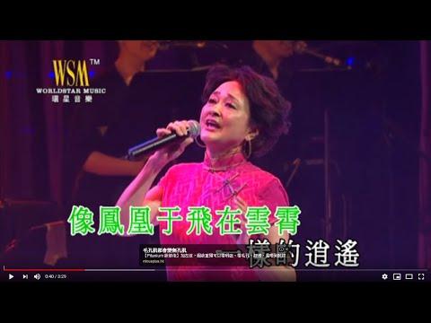 08. 華娃 - 鳳凰于飛 (情牽金曲百樂門演唱會)
