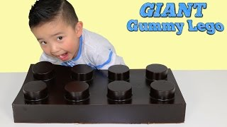 The Biggest Gummy Lego Candy Ever DIY Making A Giant Gummy Jelly Sweets Funtime With Ckn Toys