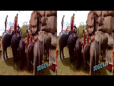 SuperHero (GoPro 3D Rig) Demos Elephants Splash Time (3D Side by side)