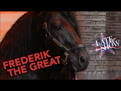 Meet Frederik the Great: World's Most Handsome Horse