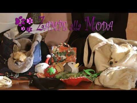 Zampe alla Moda - Episodio 4