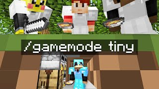 Minecraft Manhunt but i secretly used TINY mode..