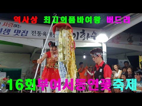 ♥버드리♥ 7월14일 하늘에서 복주머니 돈보따리가 터져내리다~^^  밤공연시작  부여서동연꽂축제