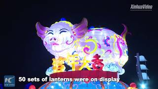 Various celebrations for the Lantern Festival around China