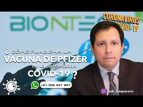 ¿CÓMO FUNCIONA LA VACUNA DE PFIZER CONTRA EL CORONAVIRUS? - ENTENDIENDO LAS VACUNAS ARN