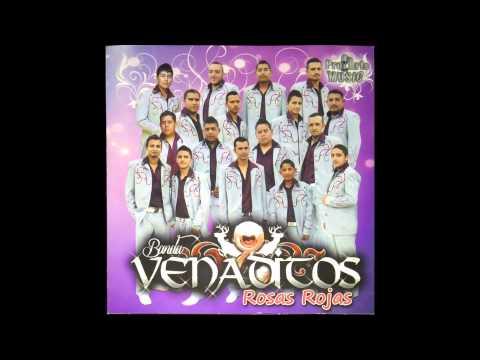 Tu de que vas - Banda Venaditos de Morelia Michoacán (Discografía Rosas Rojas 2013)