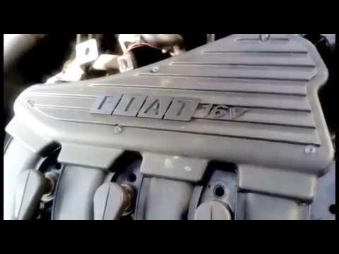 Motor Fiat Palio Elx Cambio De Banda De Distribucion Change Timing