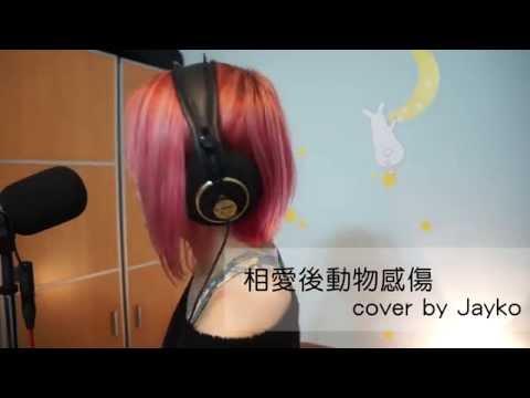 相愛後動物感傷 cover by Jayko (原唱:張惠妹)