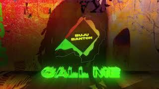 Buju Banton |  Call Me feat. Stefflon Don (Official Audio) | Upside Down 2020