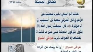 صحيح البخاري - باب حرم المدينة