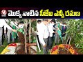 CJI NV Ramana Plants Sapling In Telangana Raj Bhavan | Green India Challenge | V6 News