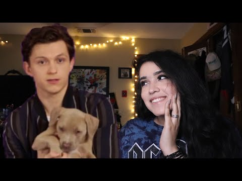 TOM HOLLAND PLAYING WITH PUPPIES INTERVIEW REACTION!