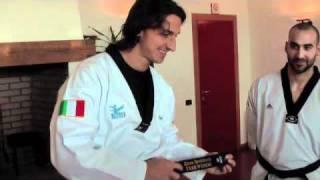 Zlatan Ibrahimovic e il Taekwondo