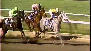 Great Thoroughbred Races Volume 2