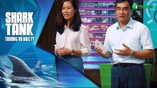 Ứng Dụng Mua Hàng Trả Giá Gọi Vốn Khủng 2 Triệu $ Sing - Hago.me | Shark Tank Việt Nam