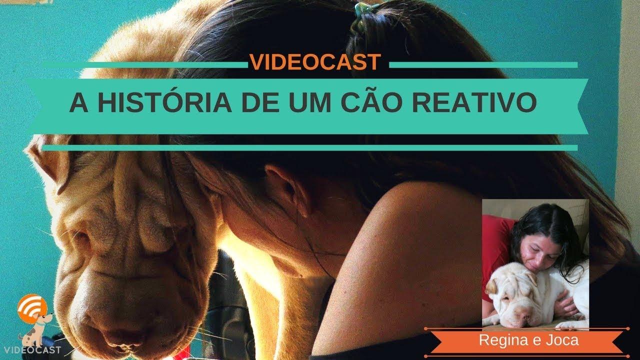 VIDEOCAST #2: A história de um cão reativo