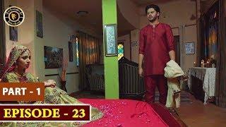 Hassad Last Episode 23 |  Minal Khan | Top Pakistani Drama