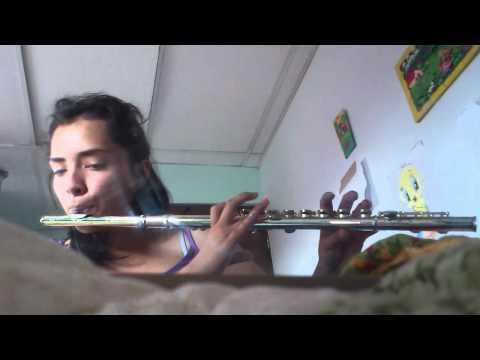 Piratas del caribe - en flauta traversa por Mena