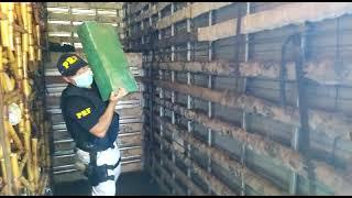 PRF prende traficante com quase meia tonelada de maconha, em Cruz Alta