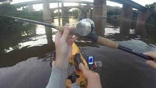Philly Flatheads and Breaking in a New Reel