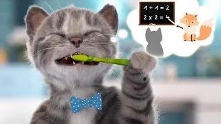 Lindo Gatito Preescolar Aventuras - Nuevo Gatito Juegos   Dibujos Animados Infantiles